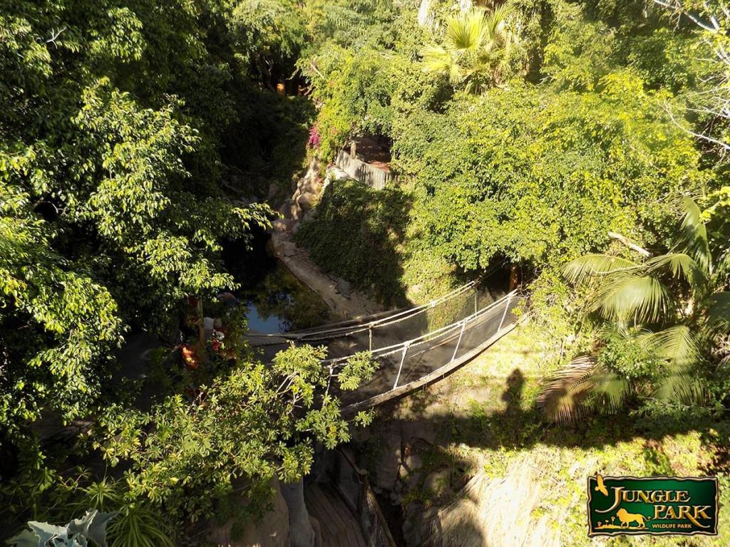 Dzsungel Park