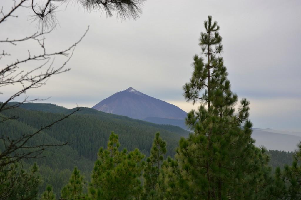 Egy napos kirándulás Tenerifén Gran Canariáról