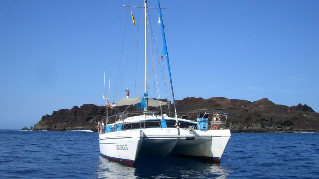 Hajókirándulás és bálnales katamaránnal