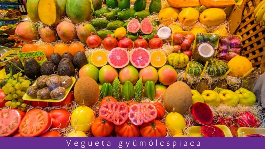 Exkluzív magyar Las Palmas városnézés