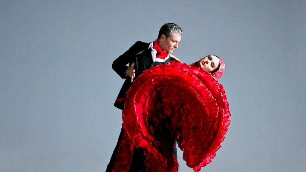 Carmen Mota Flamenco Show