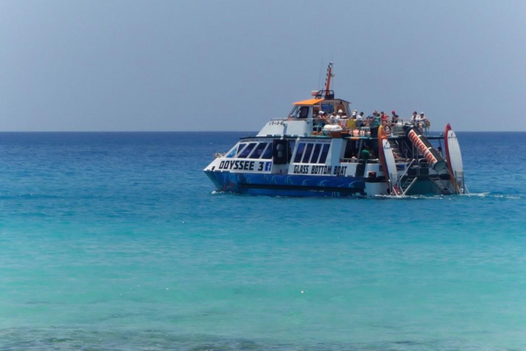Bálna- és delfinles üvegfenekű hajóval
